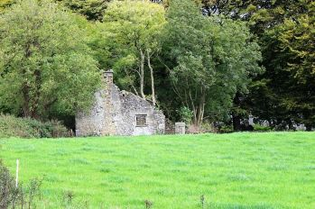 A view of Killeagh Graveyard