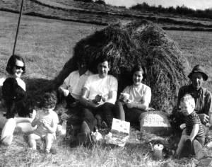 Teatime in the hayfield for the Smiths of Halfcarton